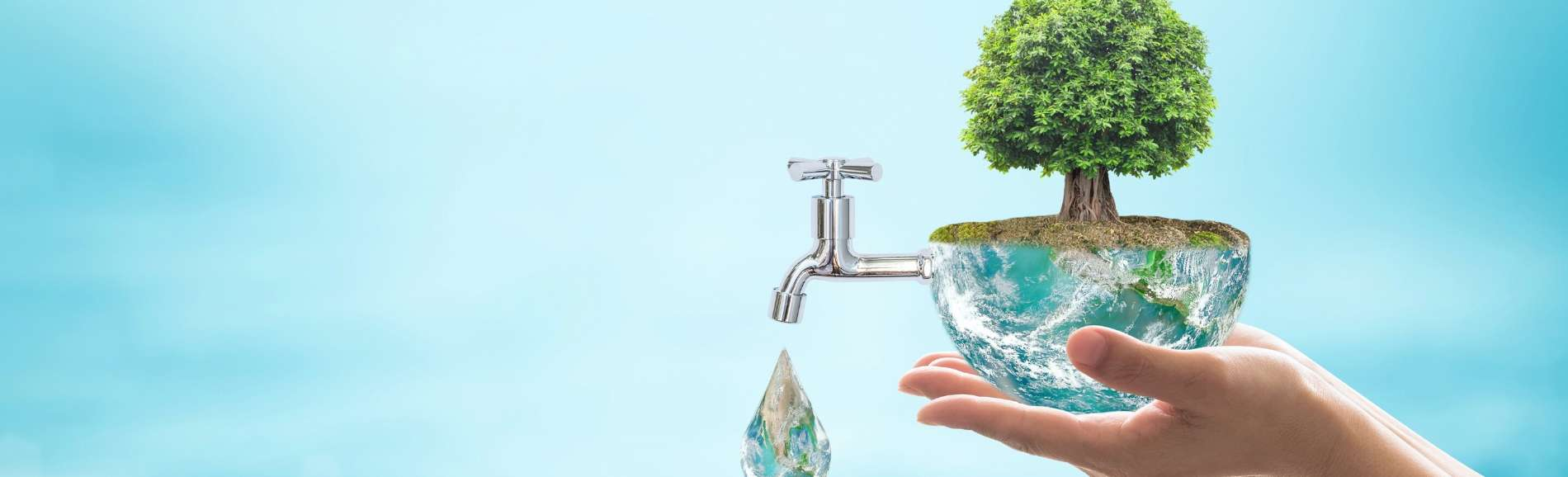 image of tree in a bowl of water with a tap attached